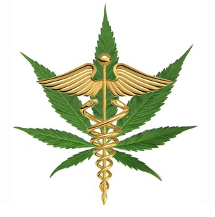 cannabis can someday be legalized for medical purposes Canada recently legalized marijuana use, becoming the second nation in   knowledge notes that medical cannabis can treat inflammation  over-the- counter in medications such as piso's cure and one day cough cure.